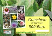 <span class=uebersicht-detail-gross>Gutschein 500 €</span>